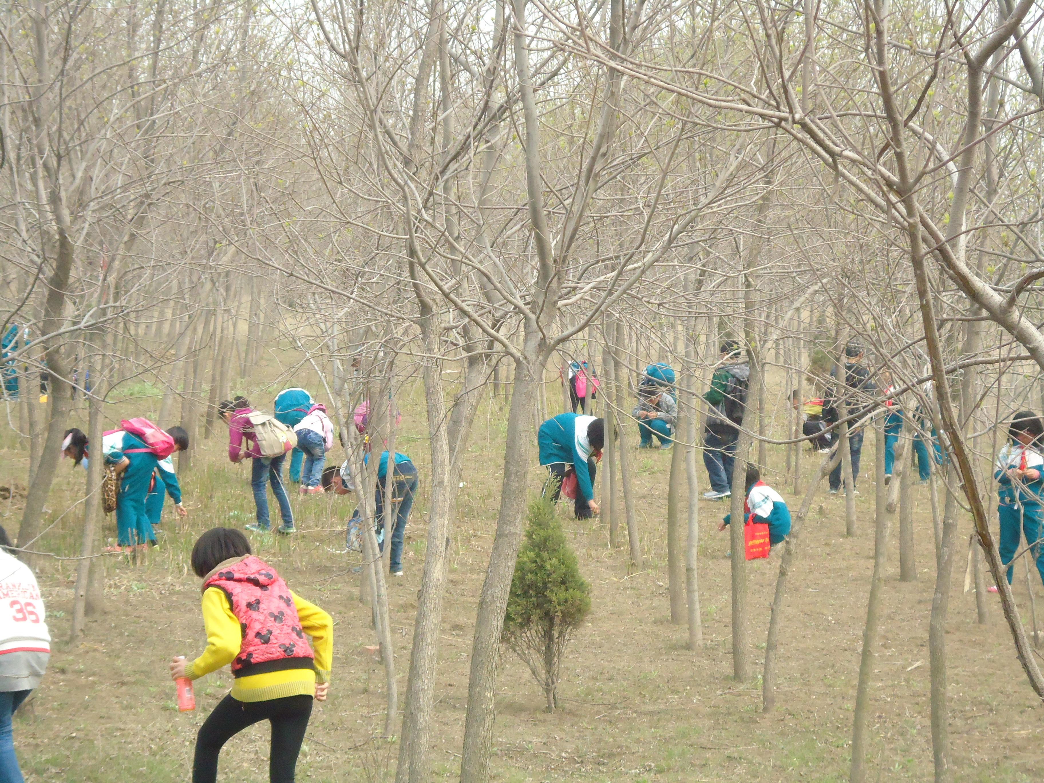 """小窑小学""""保护环境,拥抱大自然""""课外实践活动"""