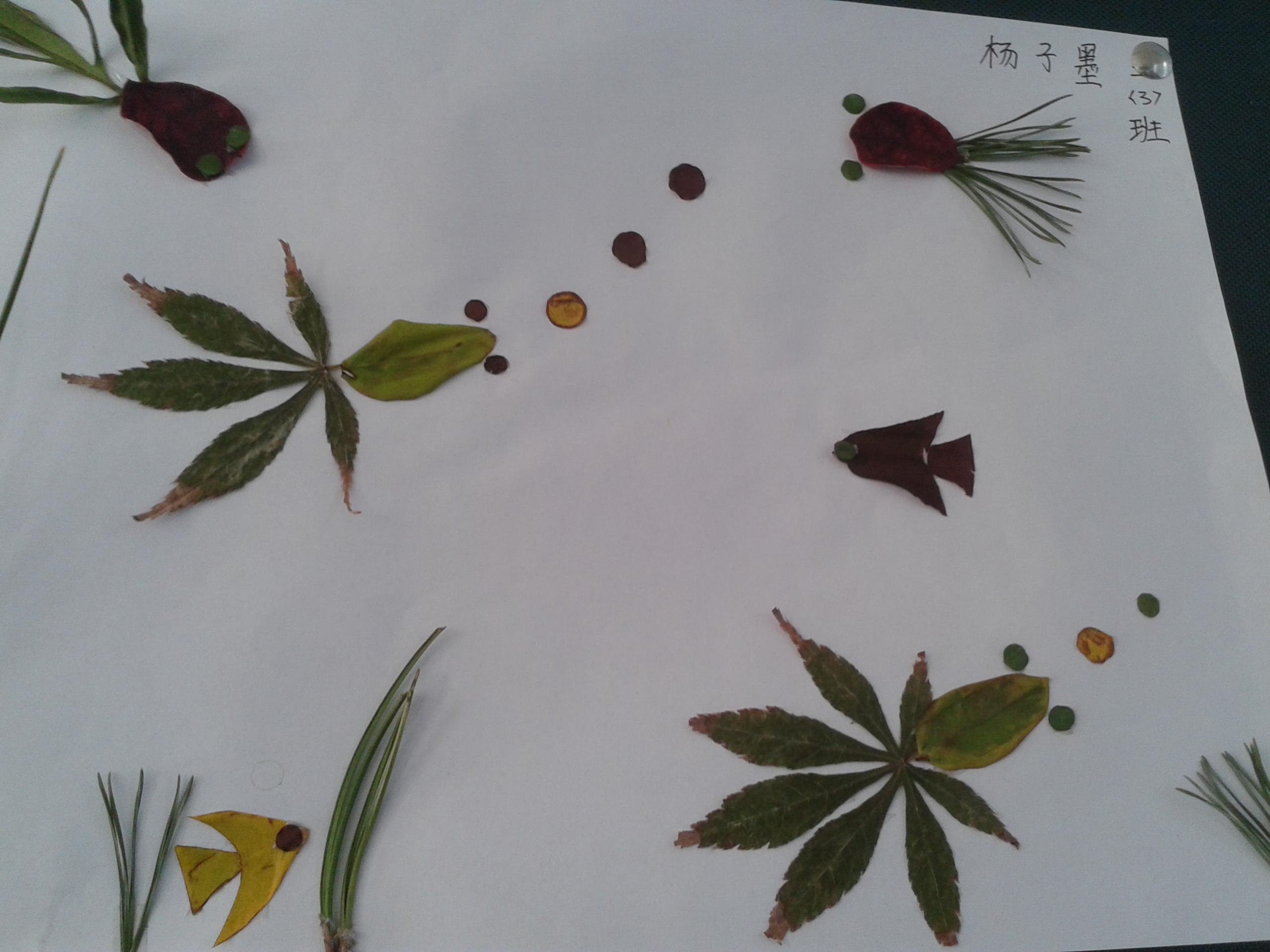 寻找秋天 树叶画制作