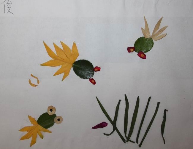 小小树叶拼贴画