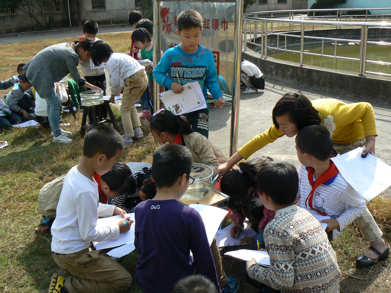 中国梦,范文和谐梦--浙江省永康市生态新楼小学简报小学队员图片