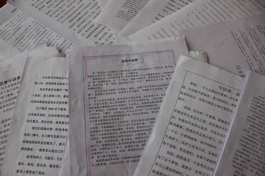 双新小学中国梦征文作品