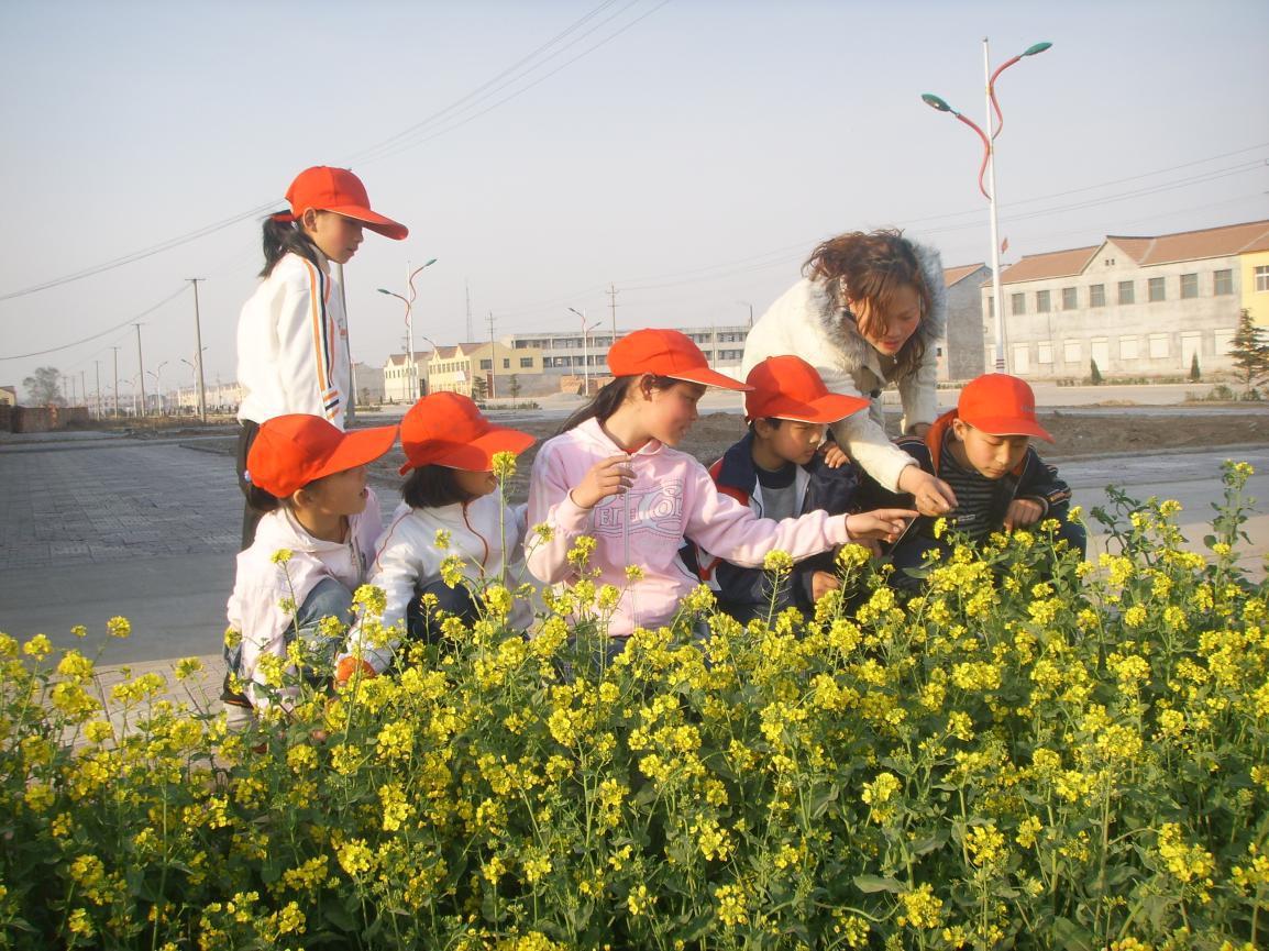 """们更好得接触大自然,让孩子走进春天,走进大自然,开展""""找春天""""队日"""