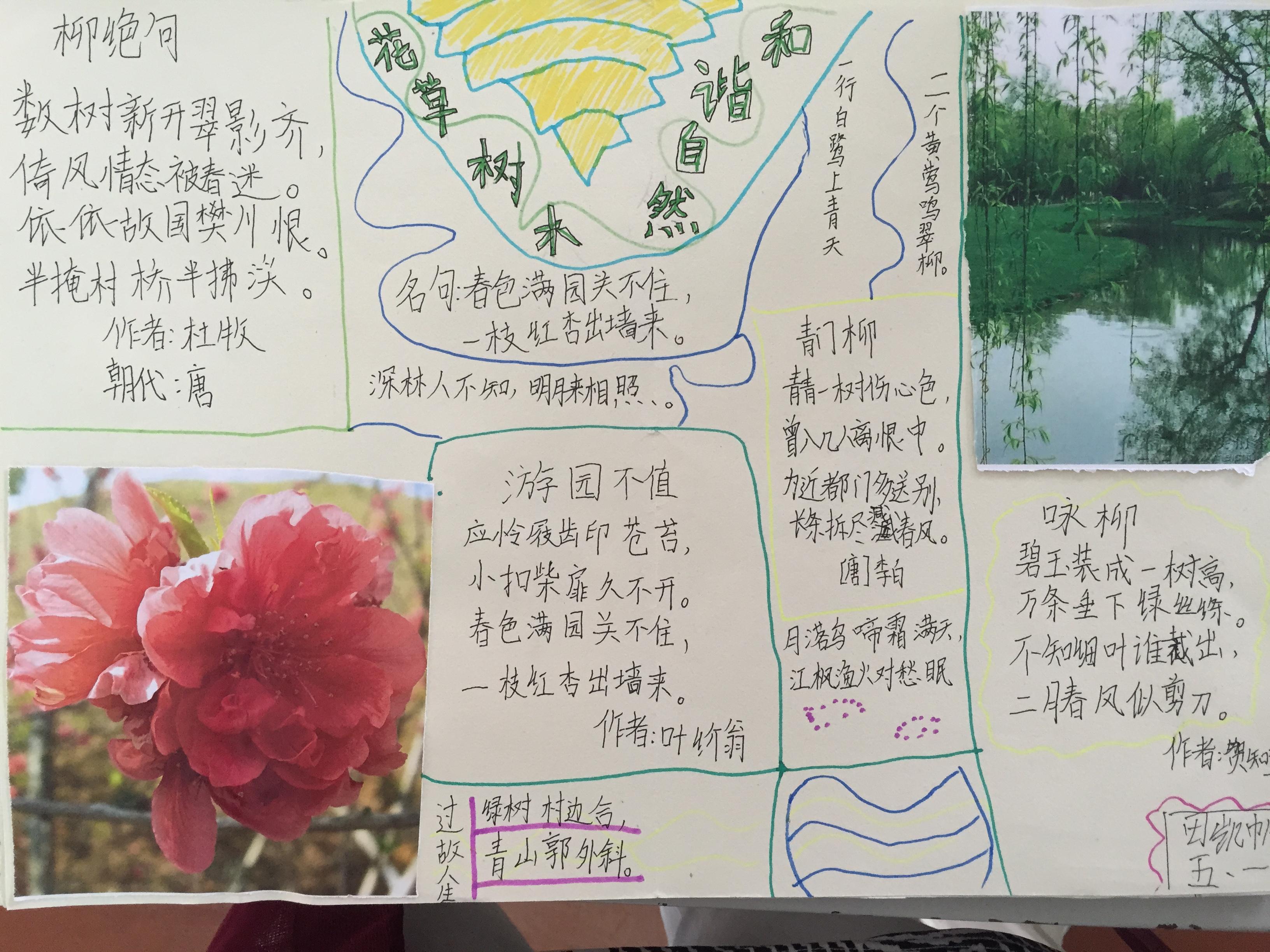 古诗文手抄报:花草树木 和谐自然