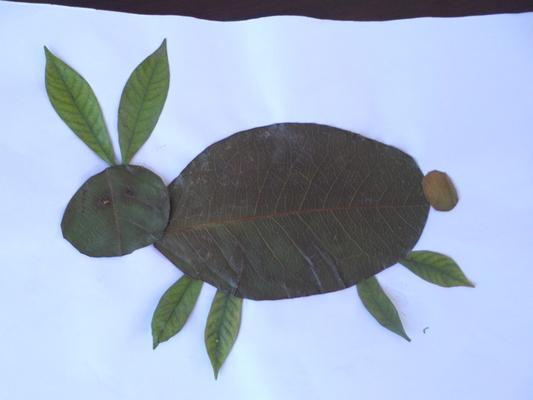 学生树叶贴画作品